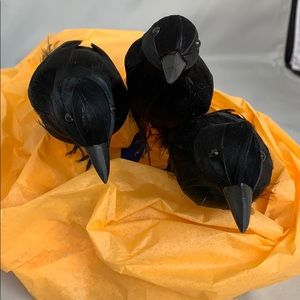3 Black Crows 🐧